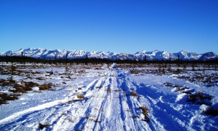 trail after Rohn  looking back at the Alaska Range