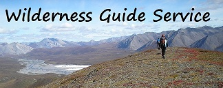 wilderness guide service alaska