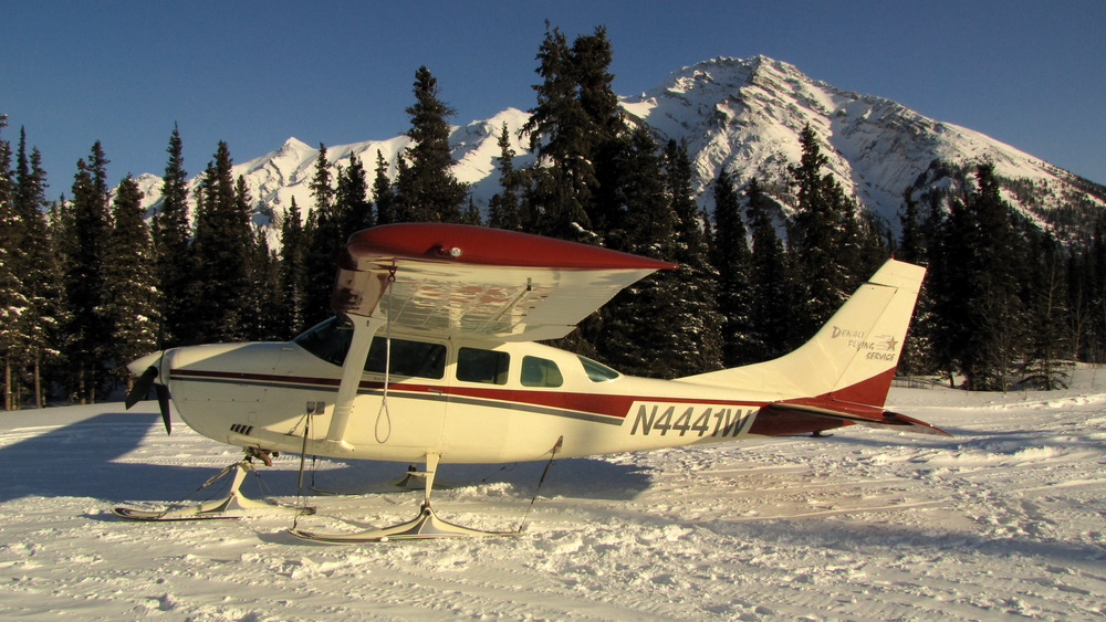 denali flying service